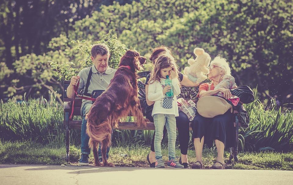 Måske er en hund det, der mangler i din familie